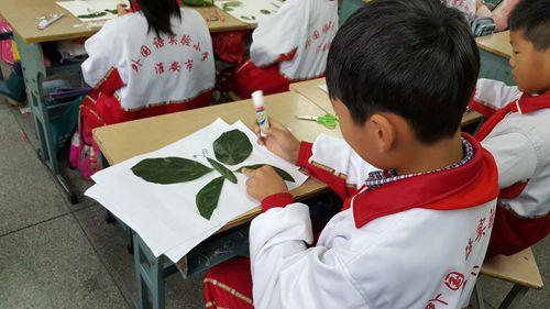 树叶粘贴画 三年级数学综合实践活动方案